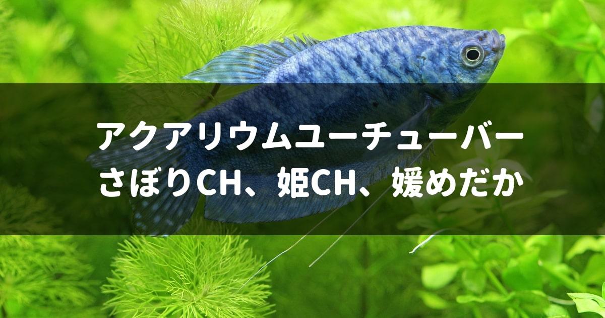 アクアリウム,熱帯魚