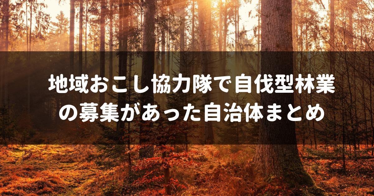 地域おこし協力隊,自伐型林業,アイキャッチ画像