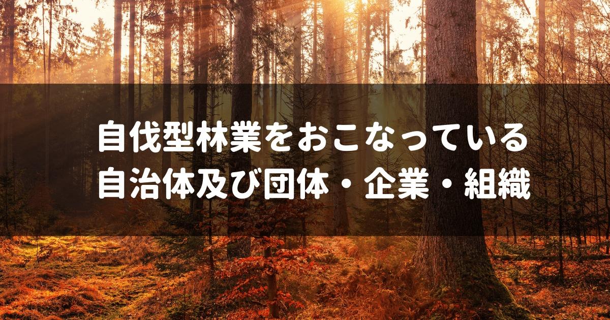 自伐型林業,アイキャッチ